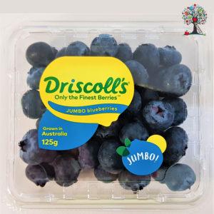 JUMBO Blueberries (1 punnet)