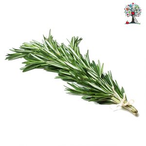 Rosemary (1 bunch)