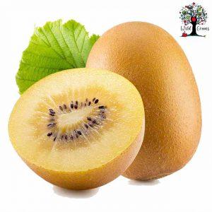 Gold Kiwifruit (each)